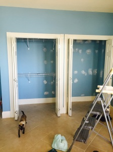 blue walls closet before painting